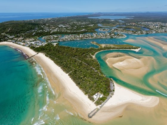 things to do in noosa heads