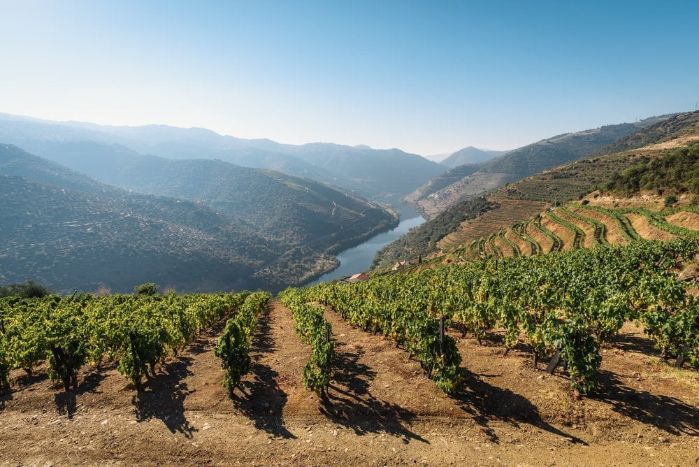 Douro Valley Portugal, a day trip you can take during your 2 days in Porto itinerary
